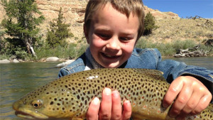 Teton Fishing Co. LLC