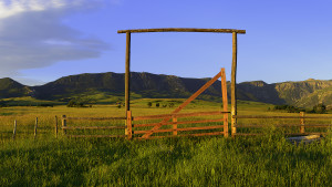 A Ranch Gate at the Brinton