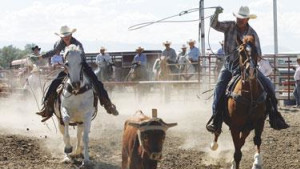 Big Horn Rodeo Circuit