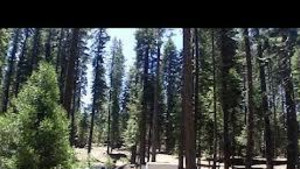 Wolf Creek Campground