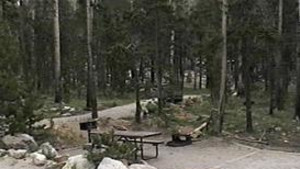 Worthern Meadows Campground
