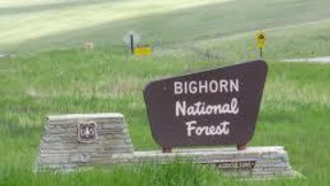 Boulder Park Campground - Bighorn National Forest