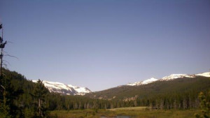 Coffeen Park Campground - Bighorn National Forest