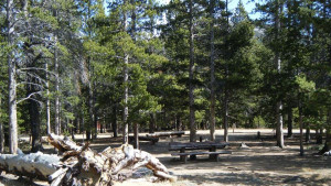 Dickinson Creek Campground