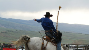 Wyoming Rodeos Travel Wyoming That S Wy
