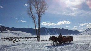 Flat Creek Inn---Stay & Sleigh