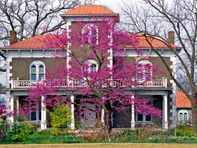 Bentonville_Peel_House_Museum_Photo_by_Chuck_Haralson.jpg