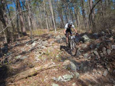 APT-35371.1-Mountain-Biking-Ouachita-Nat_Rec-Trail_800x480.jpg