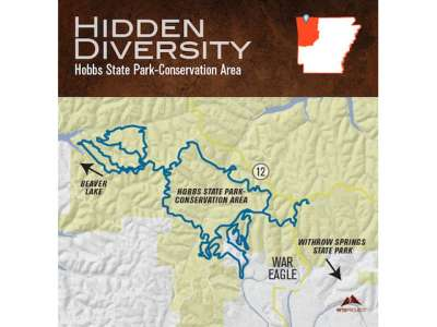 Hidden Diversity Trail Map.jpg