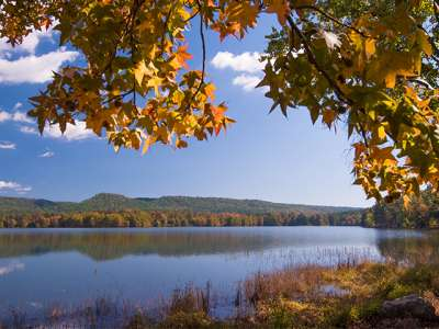 Untitled-1_0012_Cove Lake_Fall 2014_DSC_3954.jpg