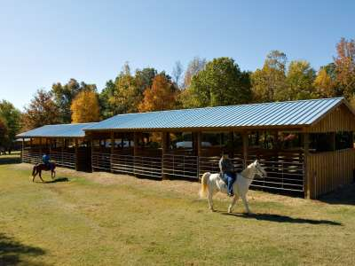 Village_Creek_Horses_and_Fall_Color02.JPG
