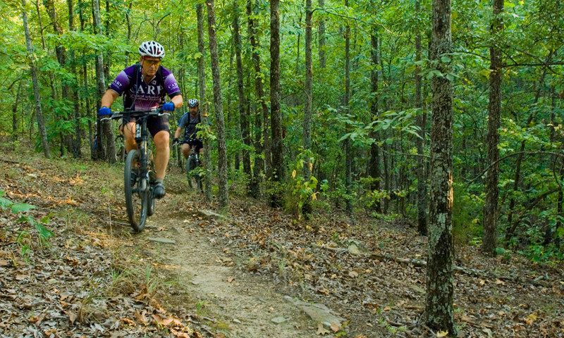 APT-35371.1-Mountain-Biking-Camp-Robinson1_800x480.jpg
