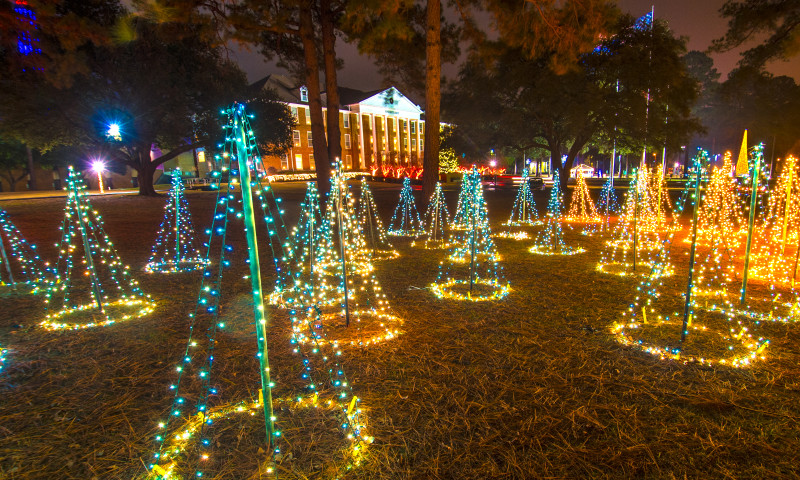 Magnolia Arkansas Christmas Events 2020 Magnolia Trail of Holiday Lights   Arkansas.com