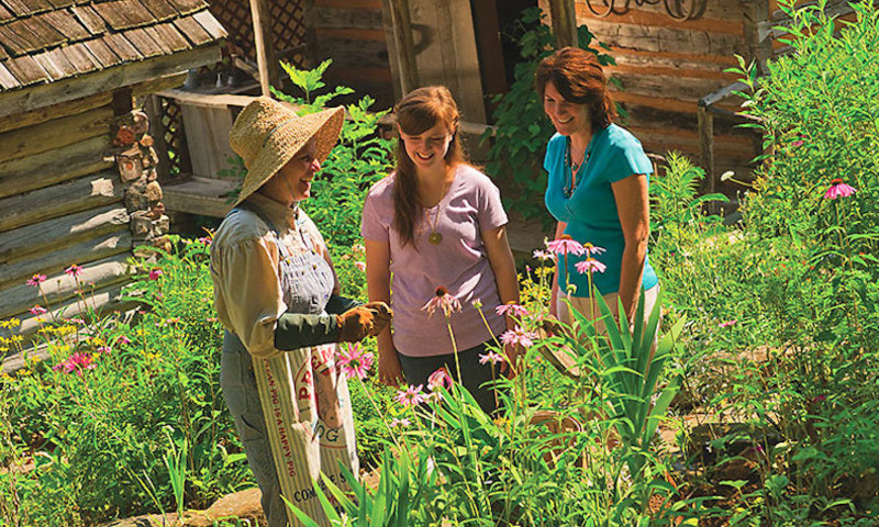 Ozark-Folk-Center-HERBS.jpg