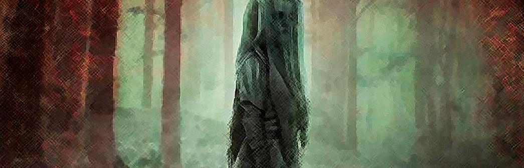O Causo da Moça do Véu Negro
