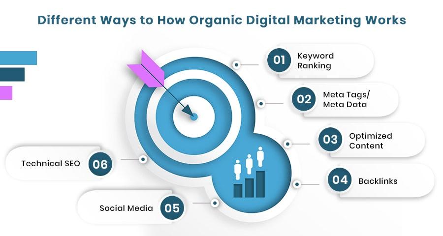 Organic Marketing Includes