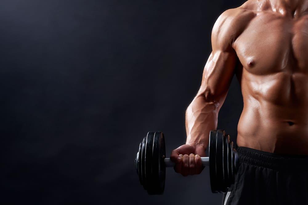 dicas para ganhar massa muscular: cardápio para hipertrofia