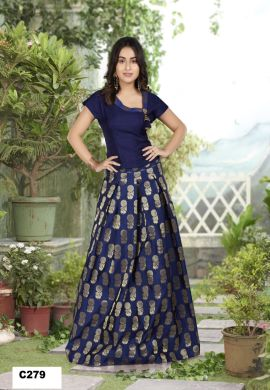 Minu Navy Blue Minu Manini Fashionable Dola Top With Banarasi Sil Gown