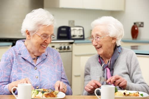 Day Centres for Elderly People