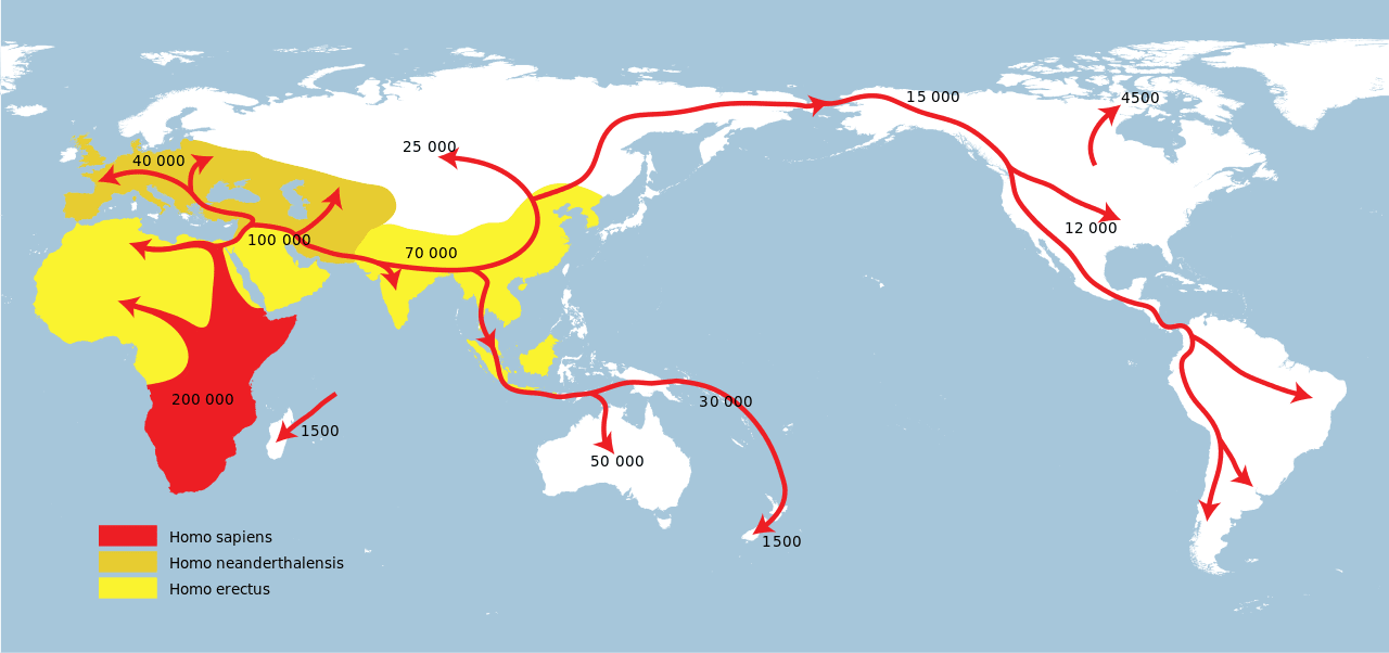human migration map