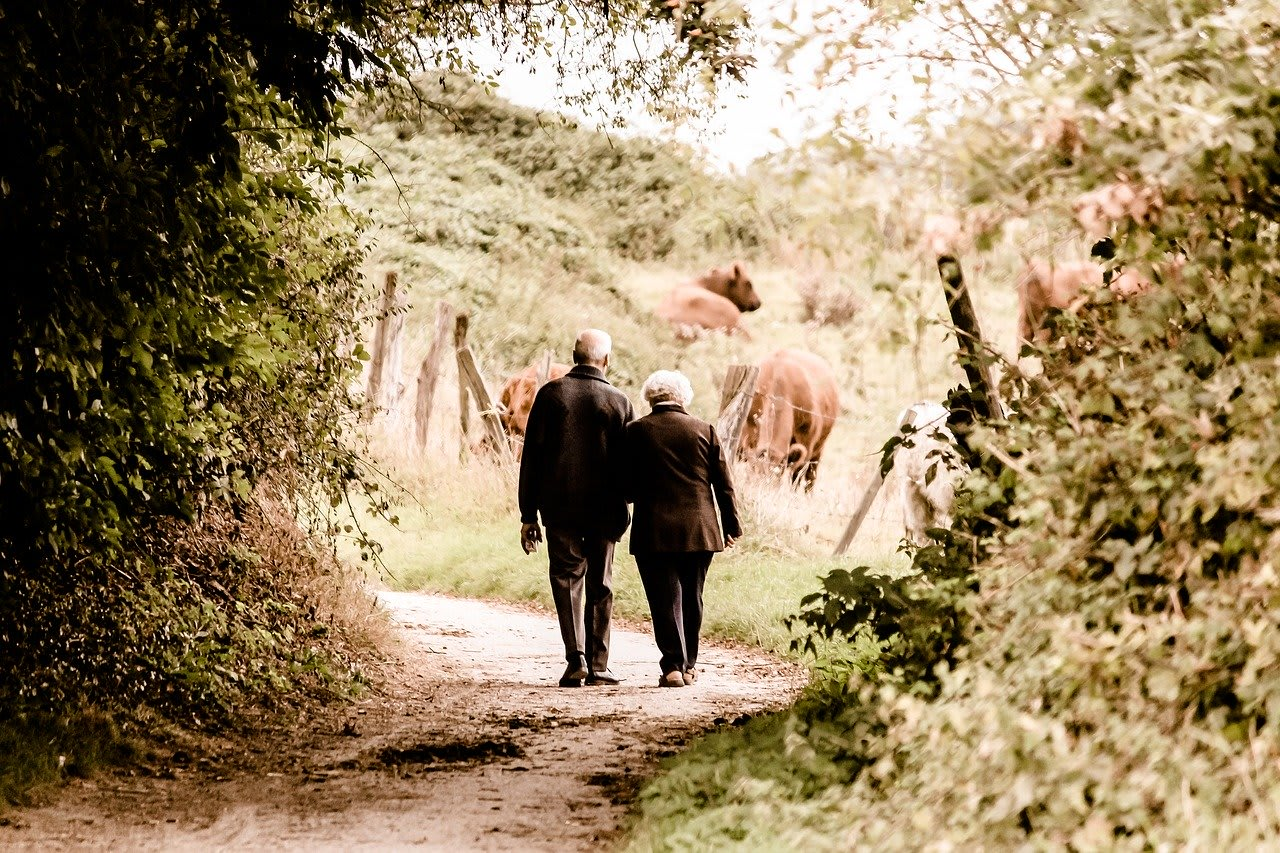 retirees walking in nature
