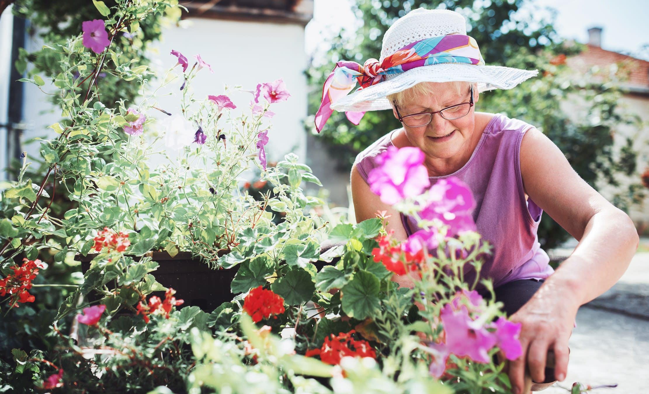 a carer gardening