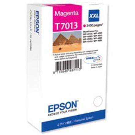 ראשי דיו מגנטה מקורי EPSON T7013