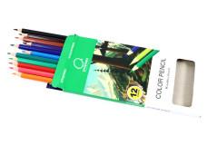 סט 12 עפרונות צבעוניים -השולחן הלבן
