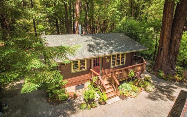 Romantic creekside cedar cabin in a redwood forest
