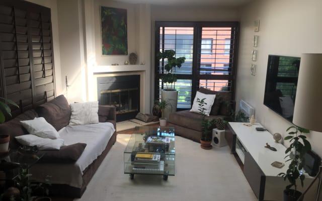 Downtown Montreal, 1 Schlafzimmer in einer schönen Wohnung