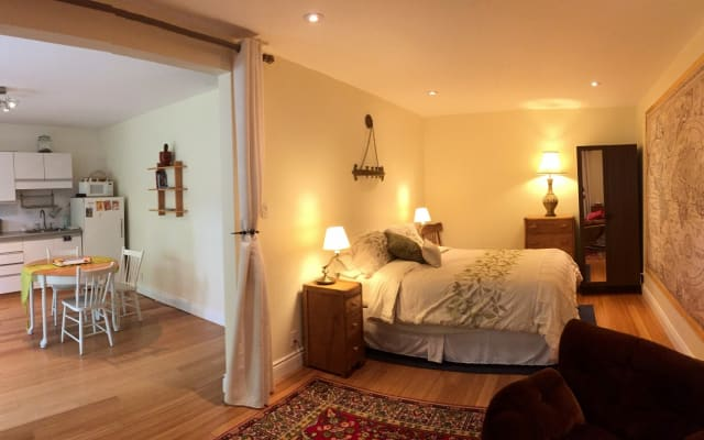 Bedroom - Living Room - Kitchen Studio in Rosemont Petite Patrie