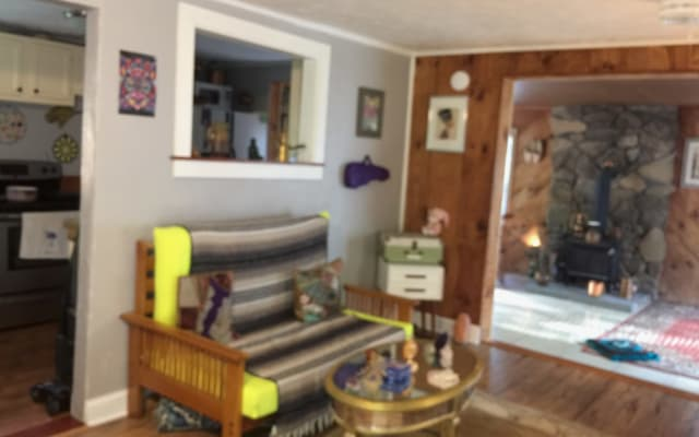 Eclectic spiritual home in West Asheville