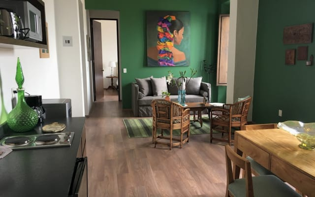 Historic & Luxury Apartment with AC - Downtown