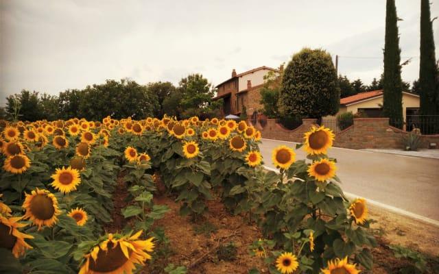 Tuscan authentic Villa La Mucchia Suite 9 ''Margherita''