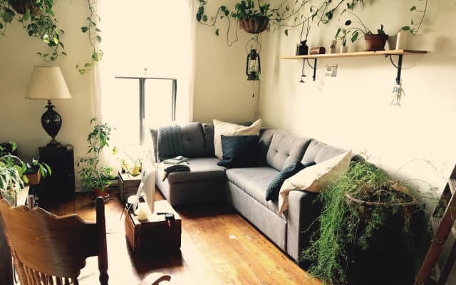 Cozy little room in a charming flat