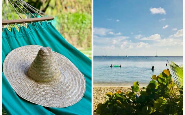 """A 100m de la plage Pointe Marin: """"Calypso""""  Maison F3 colorée et arty"""