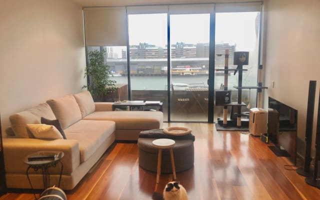 Docklands bedroom with water views, wifi & our cats!