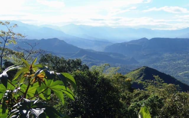 EcoGay Farm, Colombia