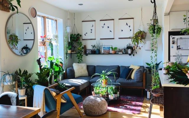 Encantadora cama / baño privado en amplio apartamento BK con terraza...