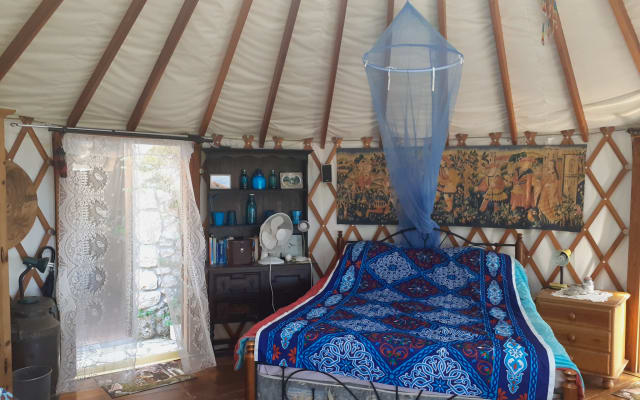 Modern Yurt sitting in an olive grove in the nature