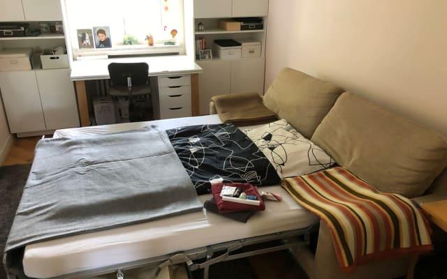 Cama grande (sofá-cama) em um belo apt******** característica especial