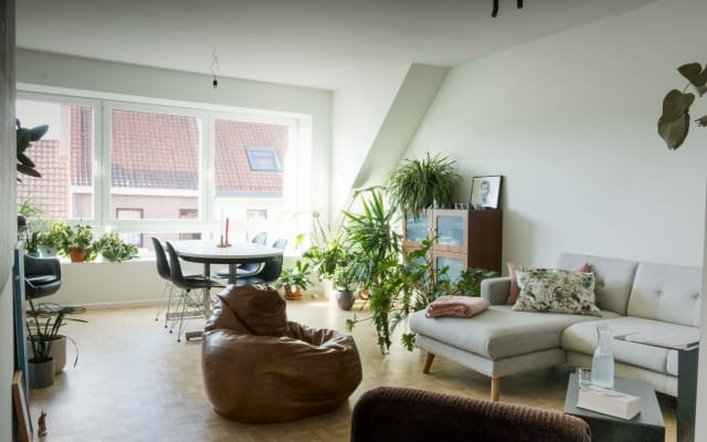 Bright spacious apartment in Ghent