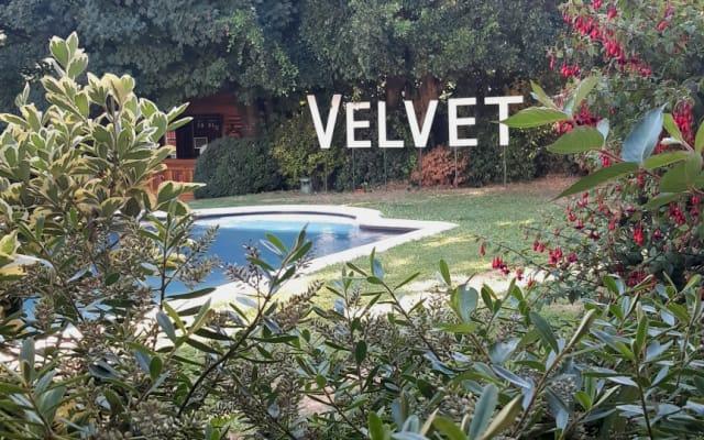Hotel Gay Boutique Velvet375