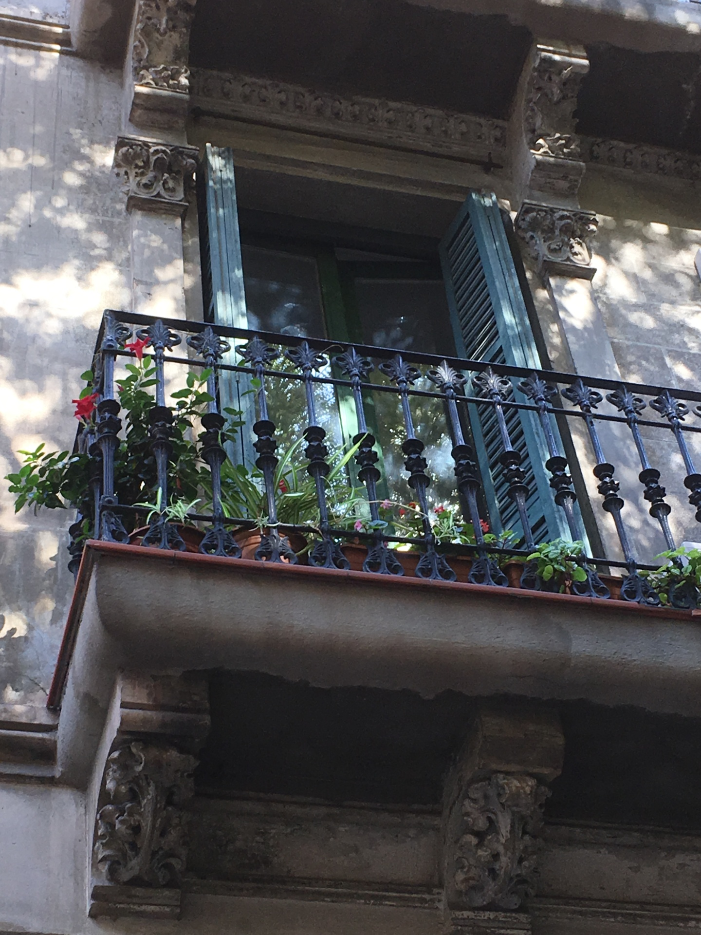 from Leon alojamientos gay en barcelona