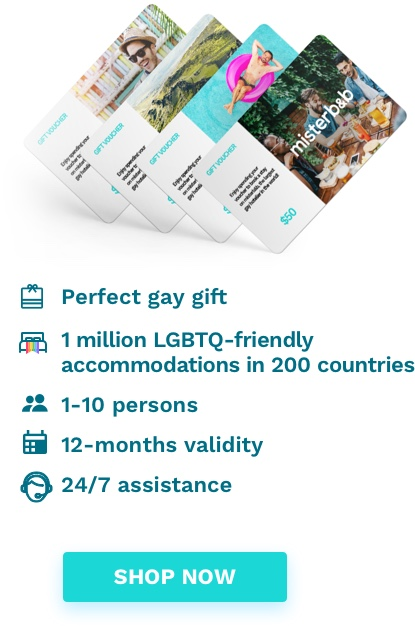 Looking for the perfect gay gift?
