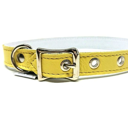 Buddy Belts Luxury ID Collars (Sunflower)
