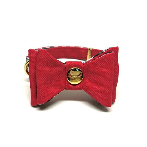 Crimson – Collar for Small Dogs