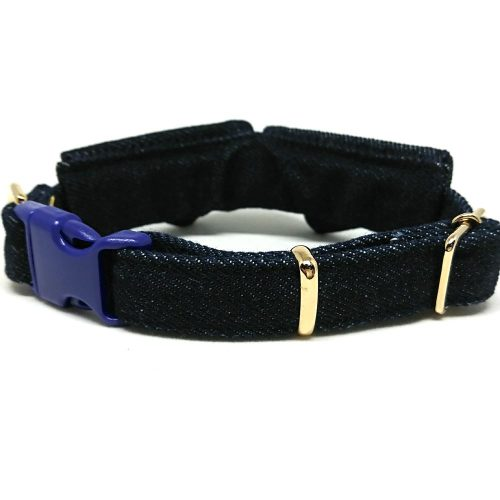 Rock Star – Collar for Small to Medium Dogs