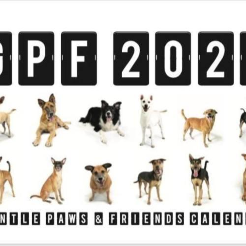 Gentle Paws 2020 Calendar