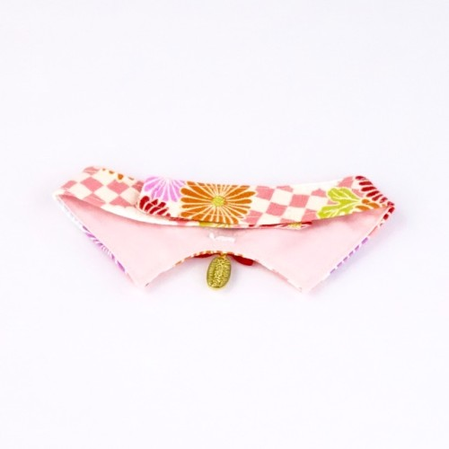 Floral Fireworks Decorative Collar
